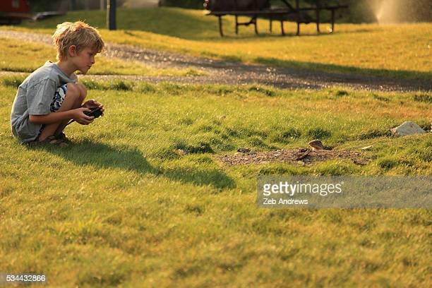 Young boy watching a ground squirrel