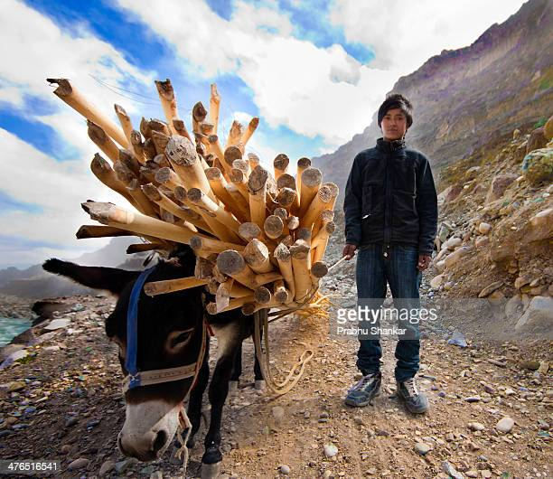 CONTENT] Young boy with his companion took this picture at Kashmir India