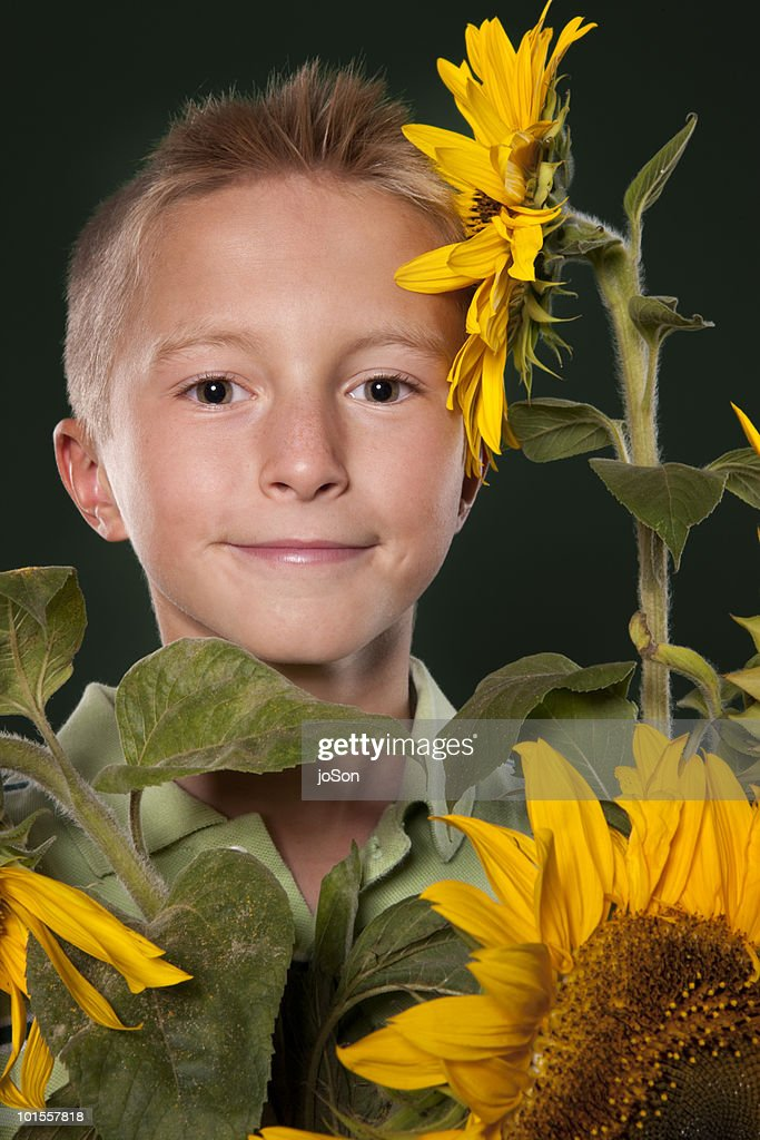 Young boy with sunflowers : Stock Photo