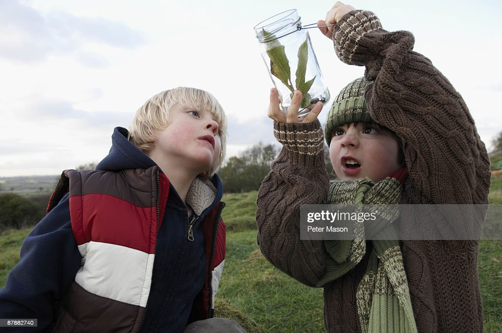 Young boys inspecting jar of insects : Stock Photo