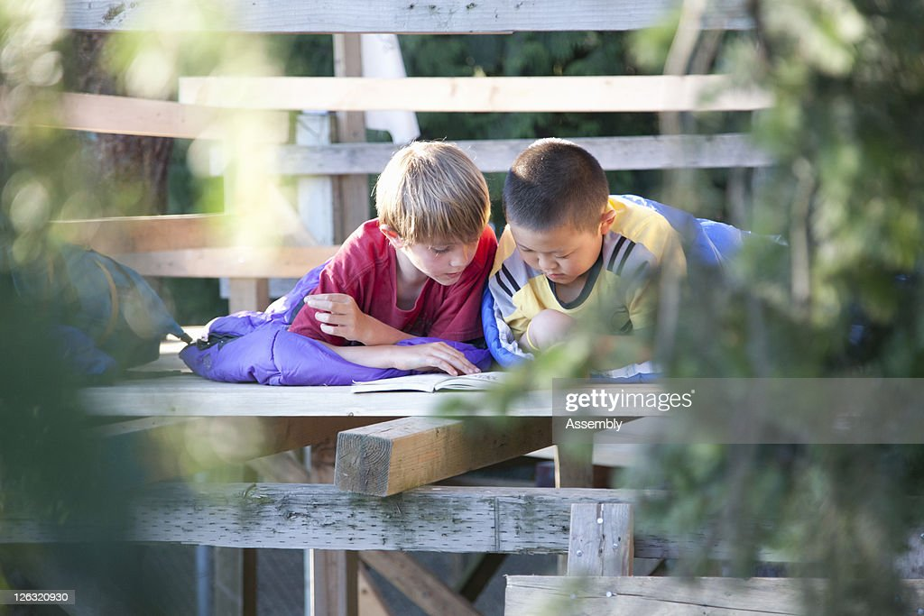 Young boys reading in a tree fort : Stock Photo