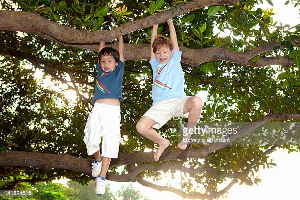 Young boys swinging from tree branch having fun