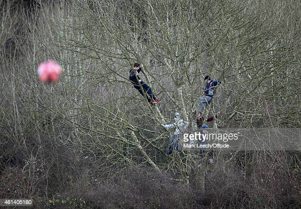 Young boys watch the match from a tree during the FA Cup Third Round match between Dover Athletic and Crystal Palace at the Crabble Stadium on...