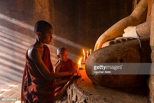 Young buddhist monks in