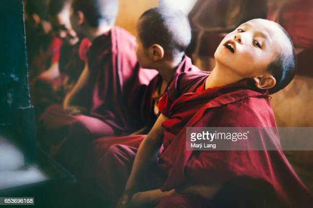Young Buddhist novices studying at Likir gompa in Ladakh Jammu and Kashmir India