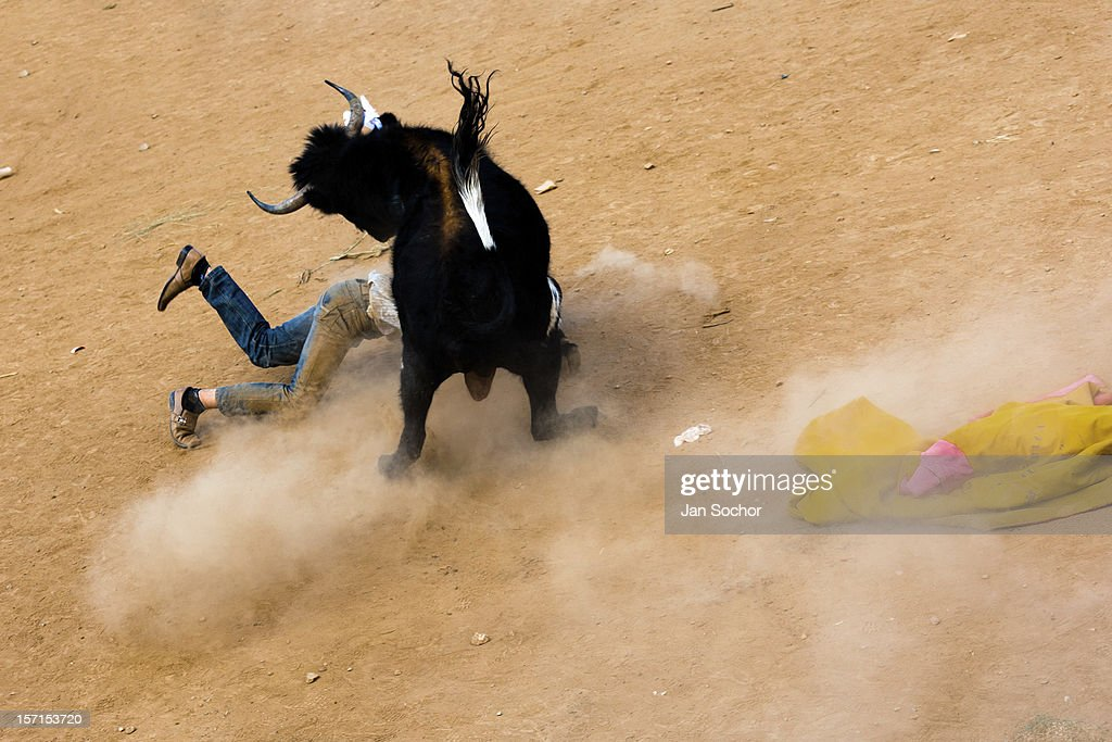 A young bullfighter falls down after being attacked by a wild bull during the Yawar Fiesta held in the mountains of Apurímac, on 30 July 2012 in Cotabambas, Peru. The Yawar Fiesta (Feast of Blood), an indigenous tradition which dates back to the time of the conquest, consists basically of an extraordinary bullfight in which three protagonists take part - a wild condor, a wild bull and brave young men of the neighboring communities. The captured condor, a sacred bird venerated by the Indians, is tied in the back of the bull which is carefully selected for its strength and pugnacity. A condor symbolizes the native inhabitants of the Andes, while a bull symbolically represents the Spanish invaders. Young boys, chasing the fighting animals, wish to show their courage in front of the community. However, the Indians usually do not allow the animals to fight for a long time because death or harm of the condor is interpreted as a sign of misfortune to the community.