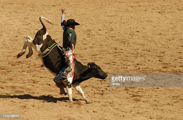 young bullrider