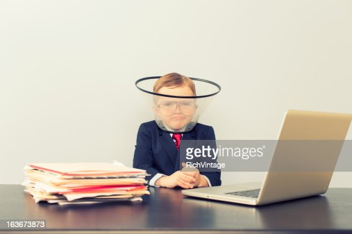 Cone of Shame : Stock Photo