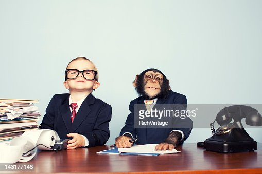 Young Business Team : Stock Photo
