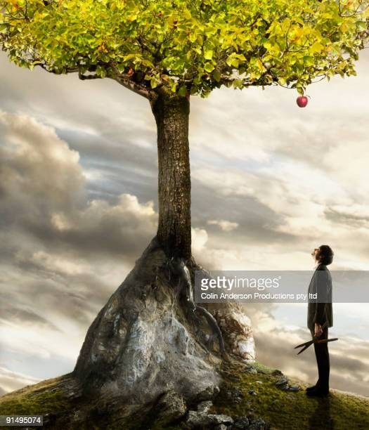 Young businessman looking up at apple on tree
