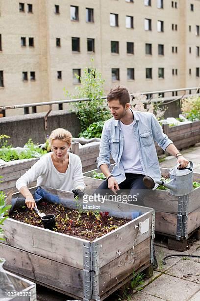 Young Caucasian couple examining plants at urban garden