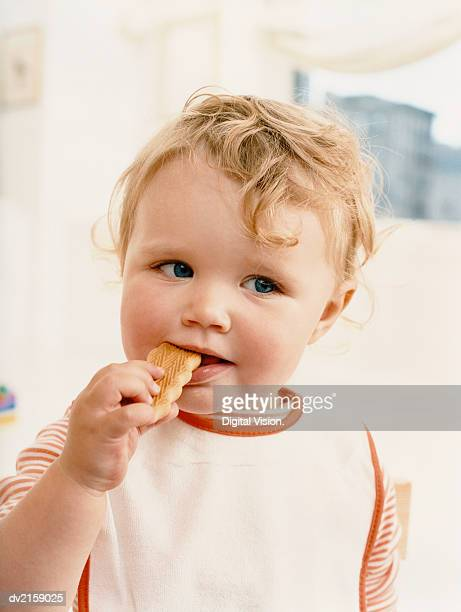 Young Child Eating a Wafer