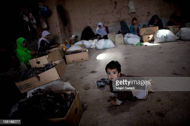 A young child plays as Afghan woman sort wool in a fur and wool factory to produce coats jackets hats and other garments for the European and North...