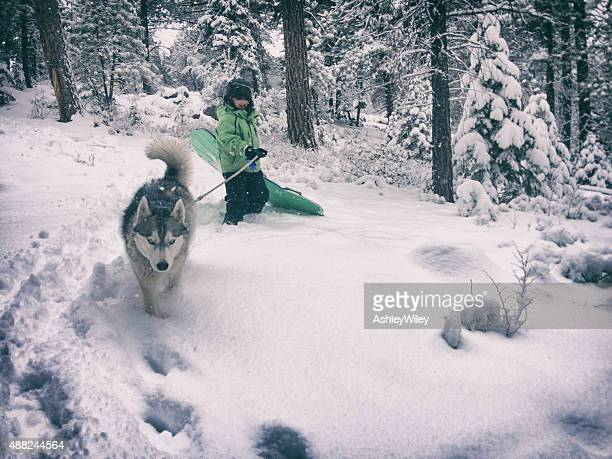Young child walking with dog to go sledding