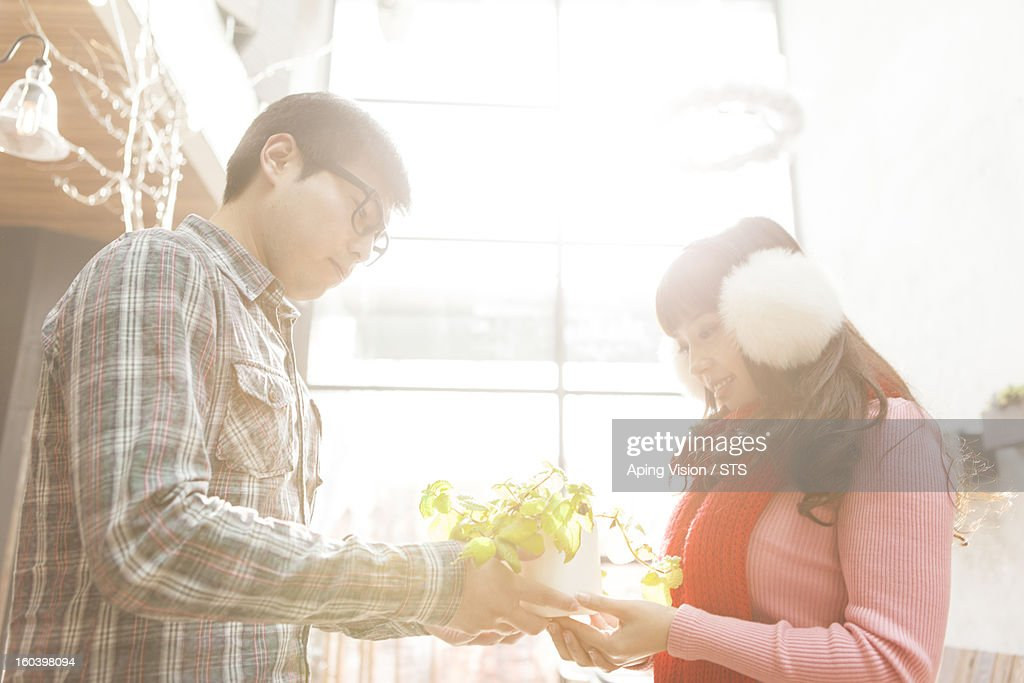 Young couple and a plant : Stock Photo