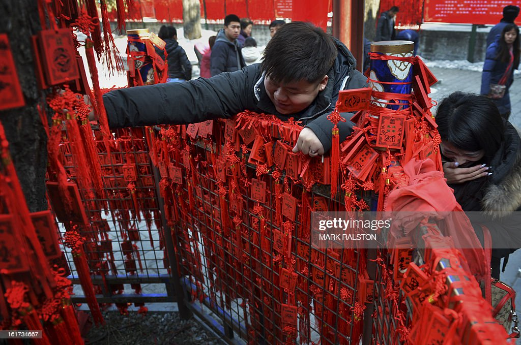 A young couple attempt to attach a Chinese Buddhist blessing tablet with wishes for the new year written on it to a sacred 600 year old tree at the Dongyue Temple in Beijing on February 15, 2013. China is welcoming the Year of the Snake and tradition proclaims that a snake in the house is a good sign because it means the family will not starve and children born in the Year of the Snake will be cunning, intelligent and wise. AFP PHOTO/Mark RALSTON