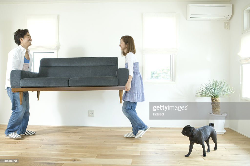 Young couple carrying sofa, dog is looking at them