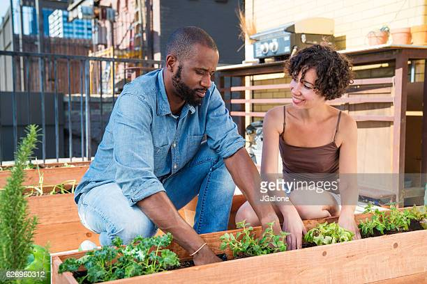Young couple gardening together