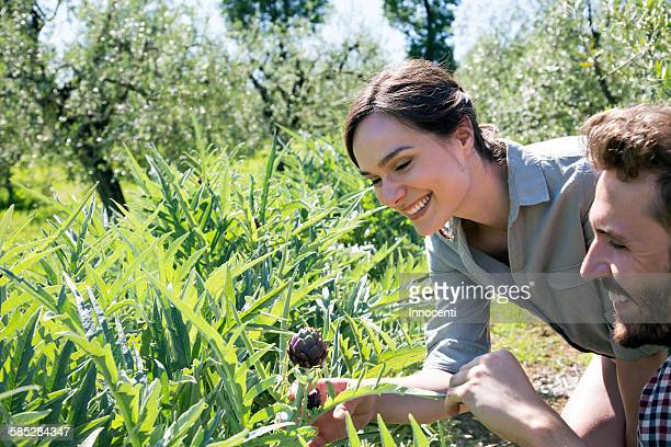 Young couple looking at purple artichoke plant smiling
