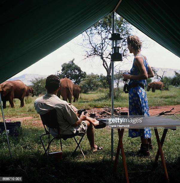 Young couple outside tent, watching elephants, South Africa