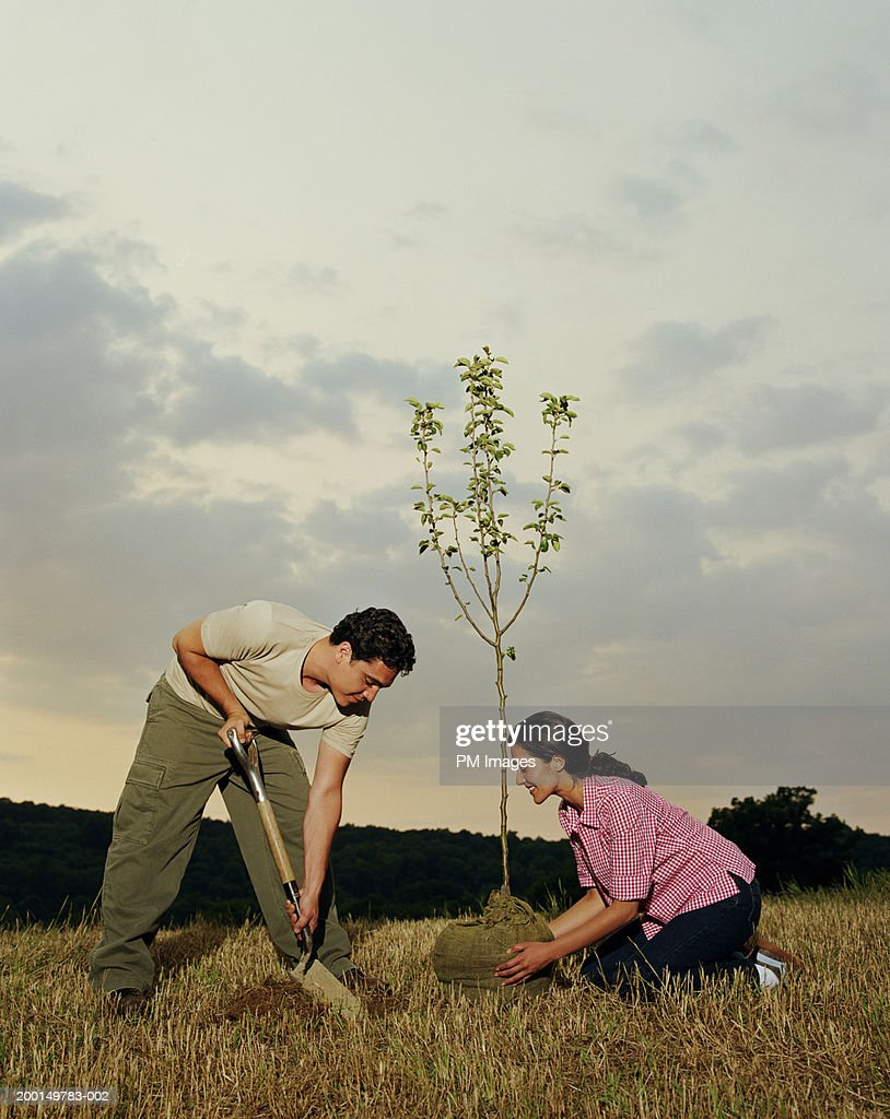 Young couple planting tree, side view