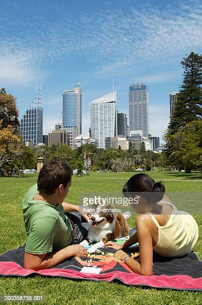 Young couple sitting on towel in park with border collie, rear view