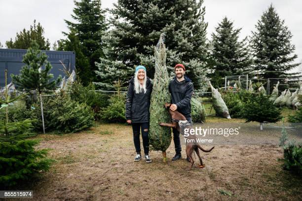 Young Couple Smiling Holding Freshly Cut Down Christmas Tree