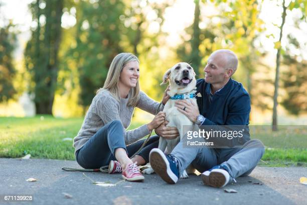 Young couple take a summer stroll with their dog on a beautiful sunny day