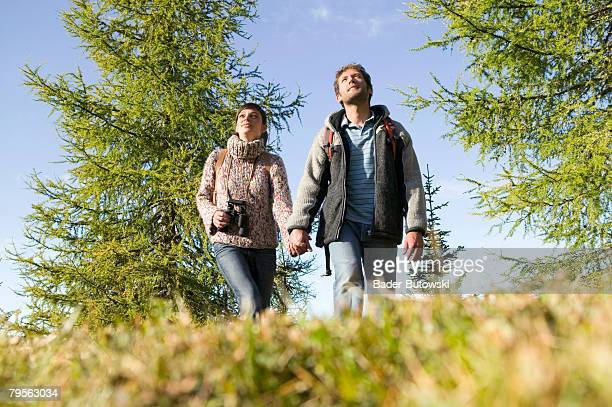 Germany, young couple walking in meadow, holding hands, low angle view