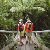 Waitakere Ranges Regional Park, North Island, New Zealand