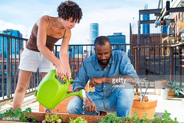 Young couple watering plants together