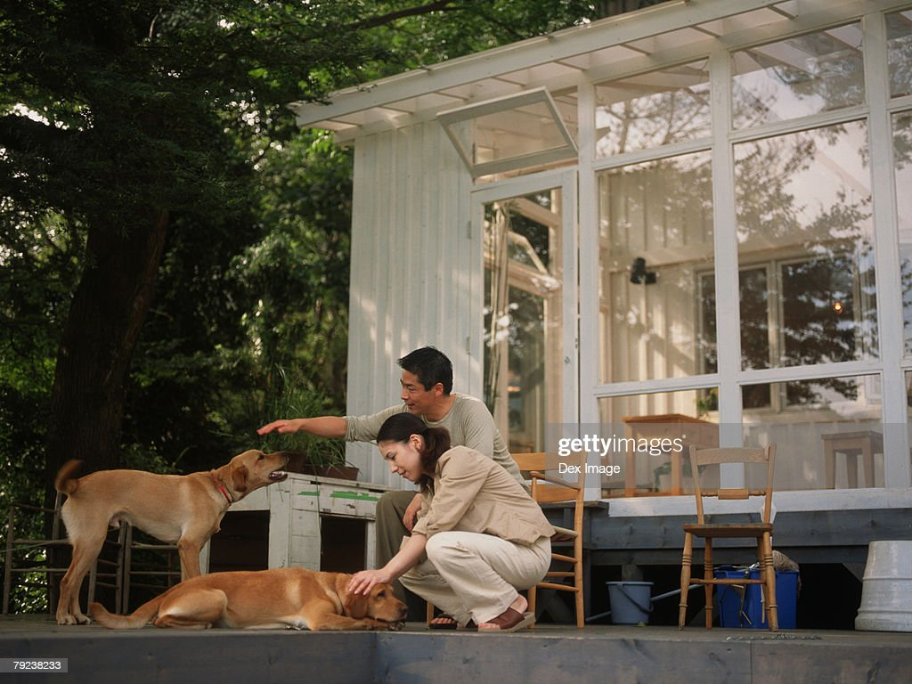 Young couple with pet dogs : Stock Photo