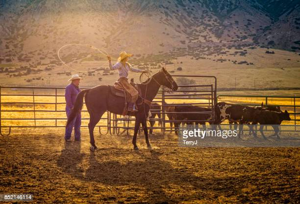 Young Cowgirl gets ready to lasso a young calf early morning