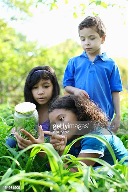 Jeunes explorers