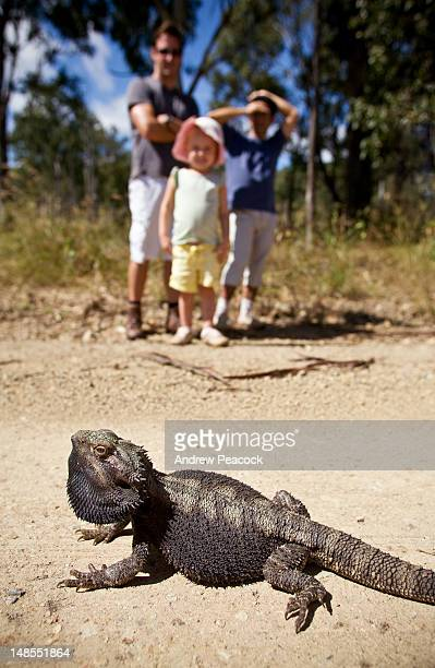 Young family by roadside looking at Bearded Dragon.