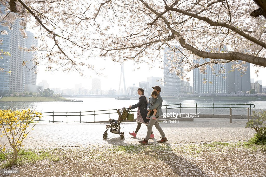 Young family under cherry blossoms tree