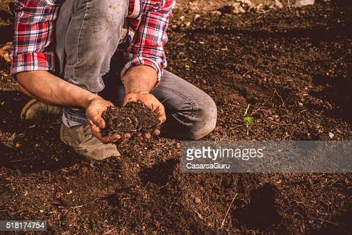Young Farmer checking the soil on his field