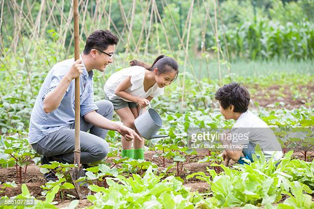 Young father and children gardening together