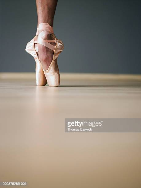 Young female ballerina standing on toes, ground view