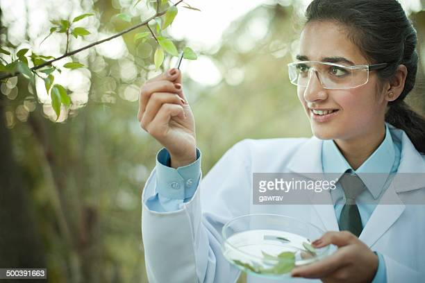 Young female Botanist collecting sample of leafs.