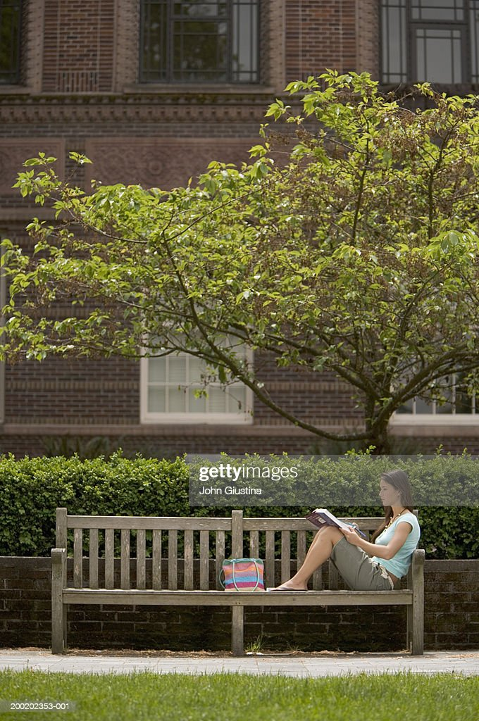 Young female student reading on bench, side view : Stock Photo