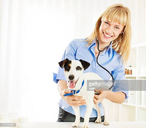 Young Female Veterinary Caring About Dog