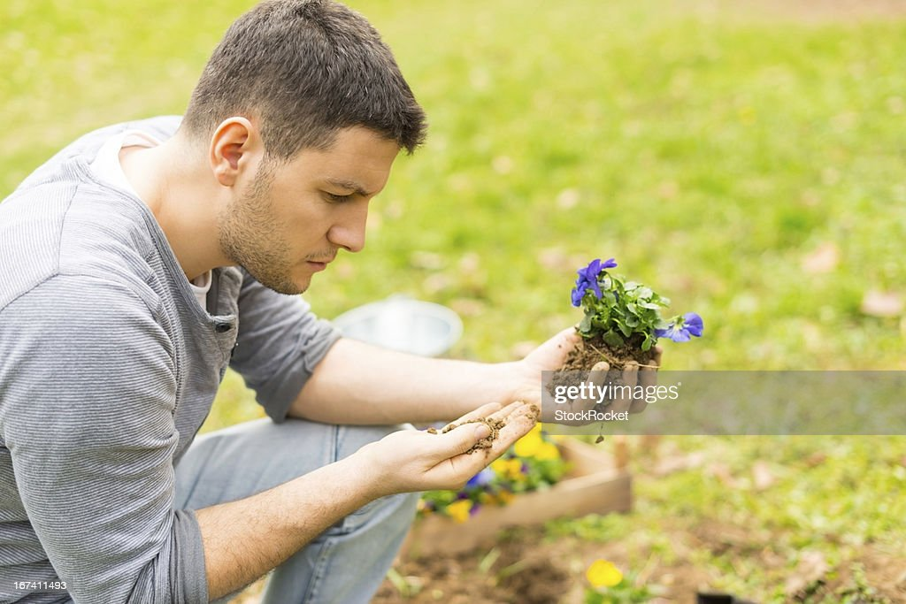 Young gardener planting flowers : Stock Photo
