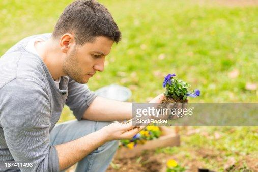 Young gardener planting flowers : Stockfoto