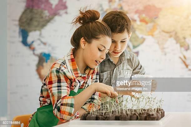 若い gardeners