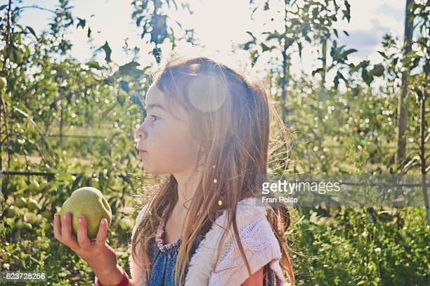 Young girl apple picking.
