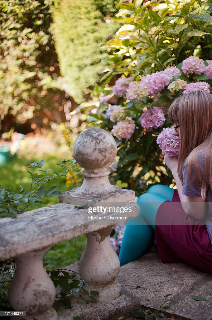 Young girl by hydrangeas : Stock Photo