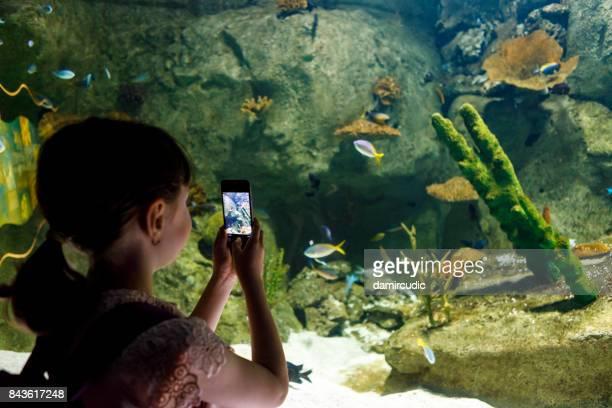 Young girl capturing pictures of fish in aquarium