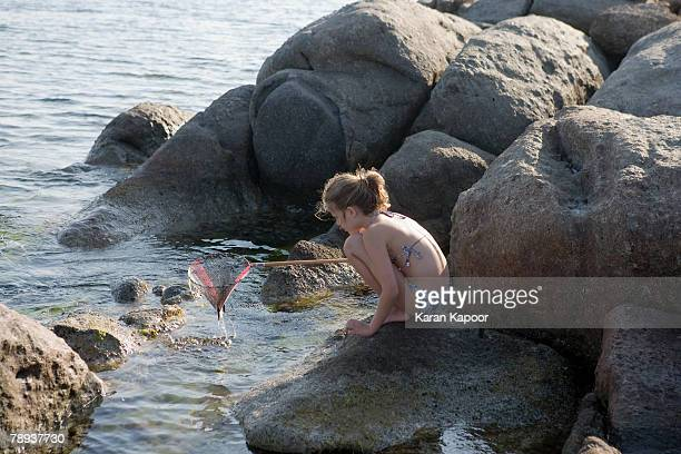 Young girl crouched on rocks fishing with a net.