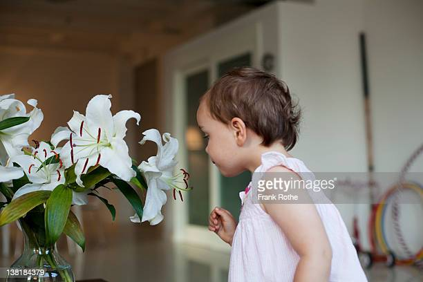 young girl examined a white flower while looking